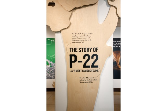 Introductory sign, shaped like a tree, in P-22 exhibition
