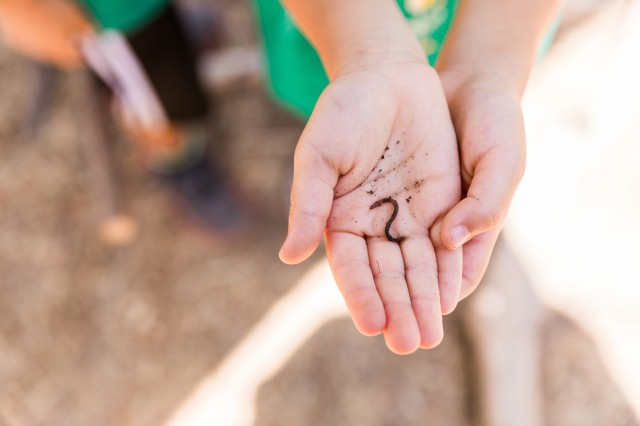 A worm in a child's hands from the Get Dirty Zone's compost bins