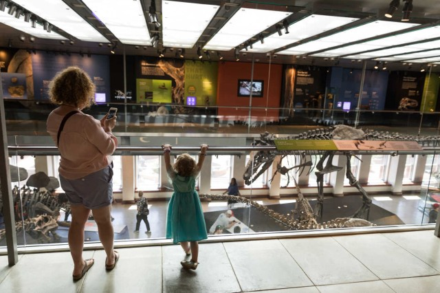 Woman and child looking down from balcony at dinosaur bones