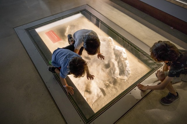 Children looking into a floor cutout showing dinosaur fossils embedded in rock