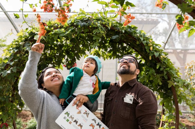 Family with child pointing at flowers and butterfly