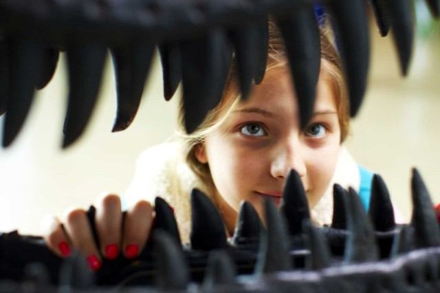 A young woman looking closely at the sharp teeth of a dinosaur