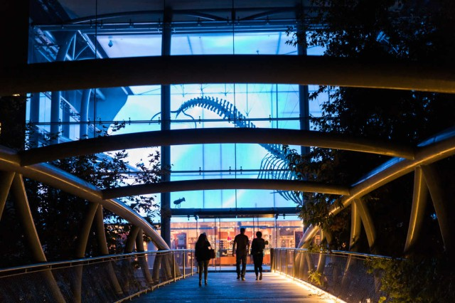 People walk across the bridge into the Otis Booth Pavilion at night