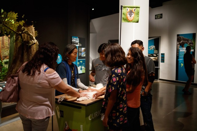 Volunteer with visitors in exhibition