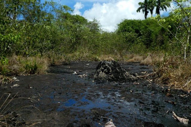 """Wild Tar Pit"" found in Trinidad during BREAS (Bridging Research & Education at Asphaltic Sites) excursion"
