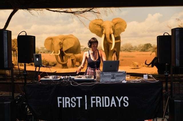 Live DJ music in NHM's African Mammal Hall during June First Fridays