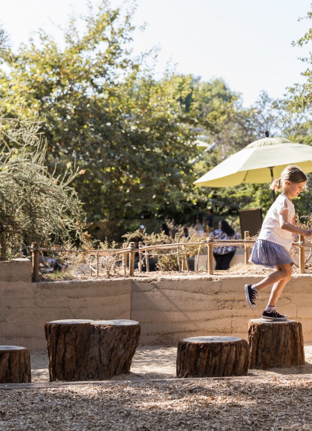 Girl jumps from one tree stump to another
