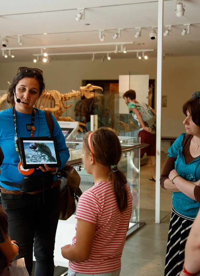 gallery interpreter on tour with guests dinosaur hall