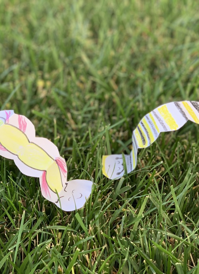 Caterpillar Races activity - finished craft
