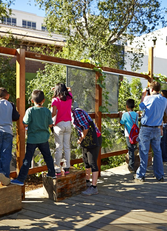 Students birdwatching in Nature Garden