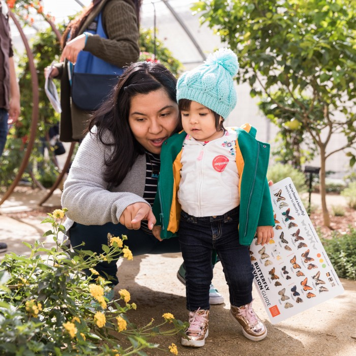 mother and child members in butterfly pavilion