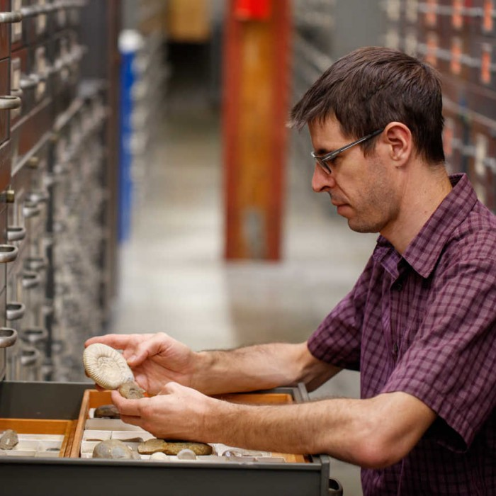 austin hendy looking at specimens in collections research and collections