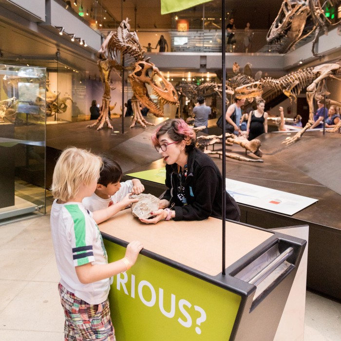 gallery interpreter with kids curiosity cart dinosaur hall