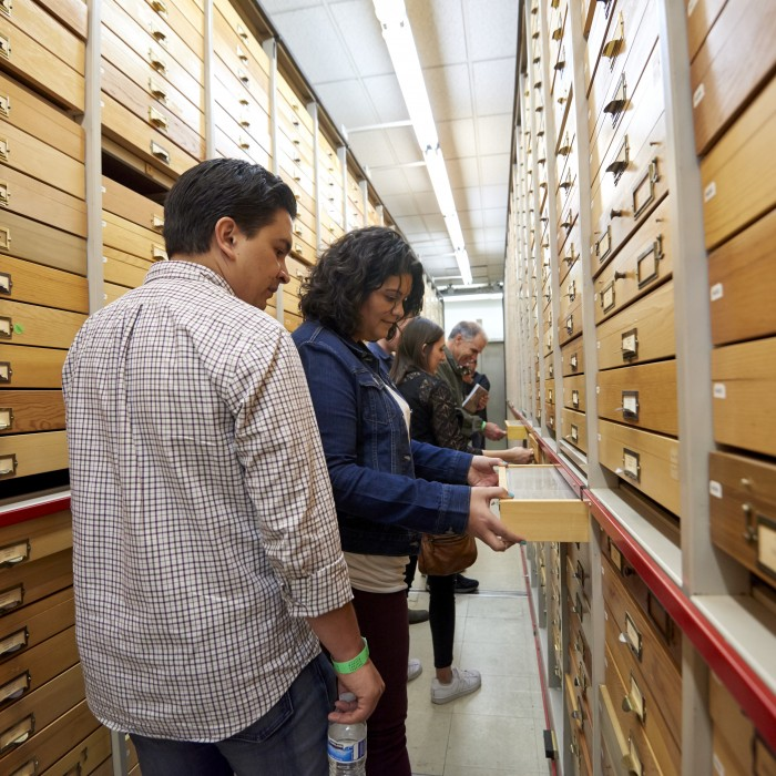 guests on private tour in collections first fridays