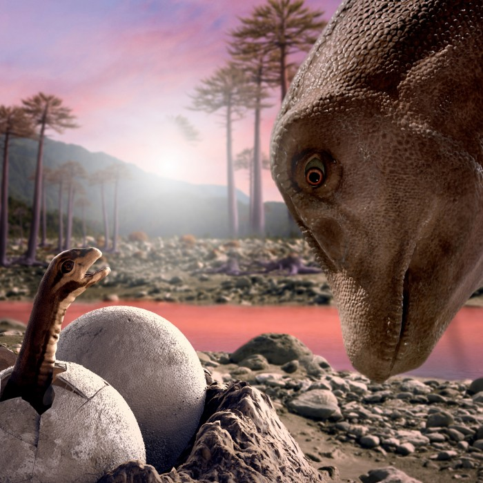 Titanosaur 3D