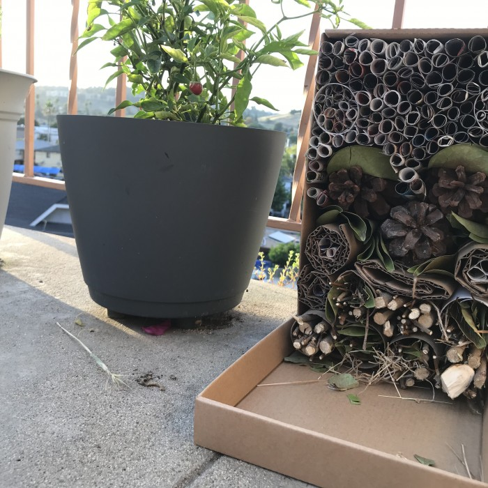Image of a completed Bug Hotel