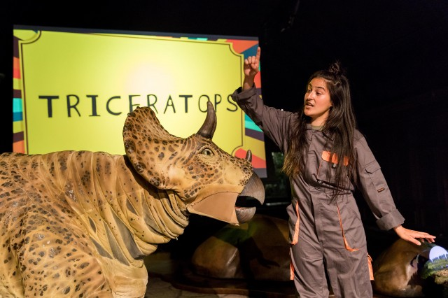 Triceratops at NHM Dinosaur Encounters Live Theater Show