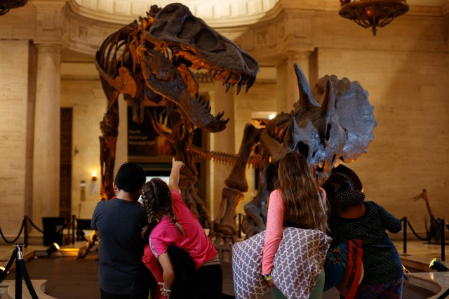 A group of children at an NHM sleepover event admiring the Dueling Dinos display