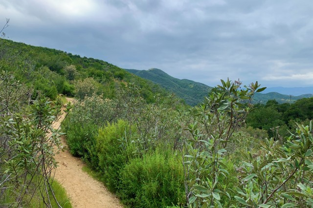 View of a hiking trail at Placerita Canyon
