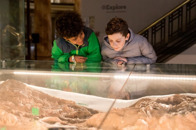 Boys looking at fossil in dino hall