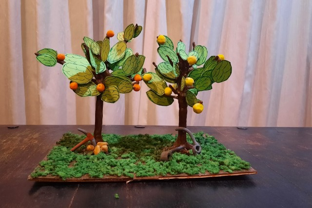 Nia's object, a lemon and orange tree