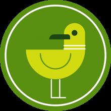 Icon of a bird