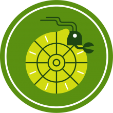 Icon of a hermit crab to represent fossils