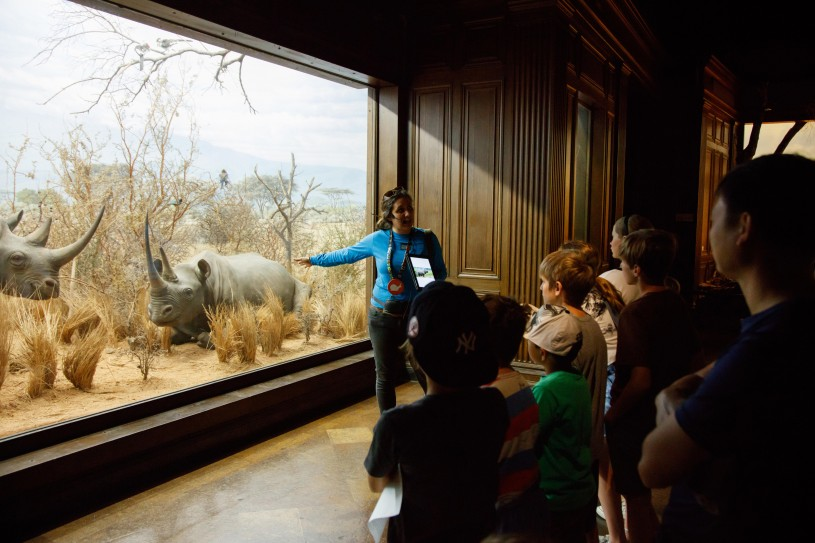 tour of african mammal hall diorama school group gallery interpreter