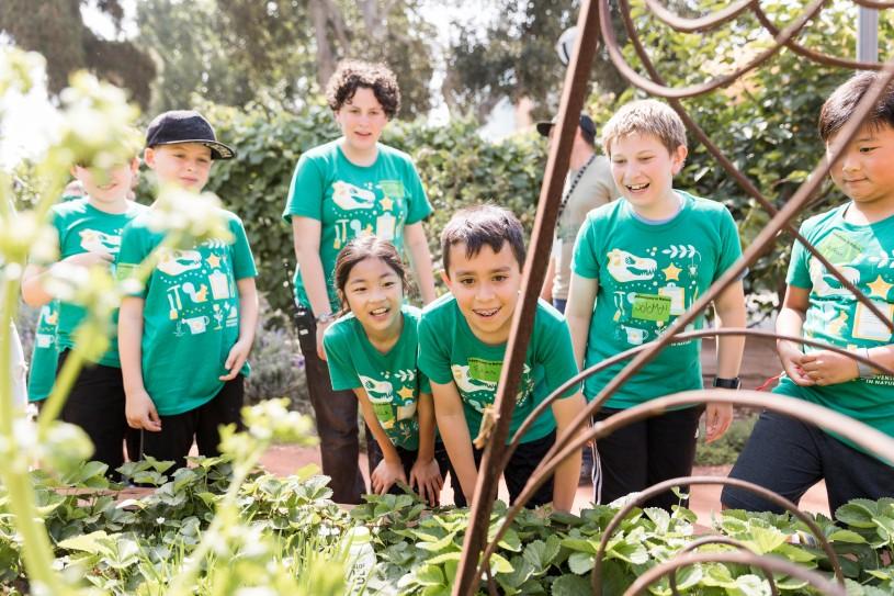 adventures in nature kids nature gardens edible garden