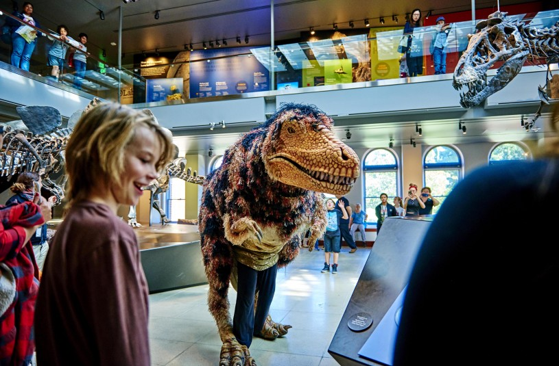 Hunter the T. Rex Puppet in NHM Dinosaur Hall