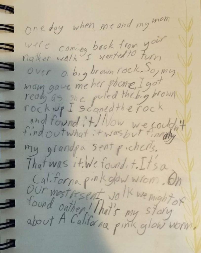 Charlotte's handwritten account of her find.
