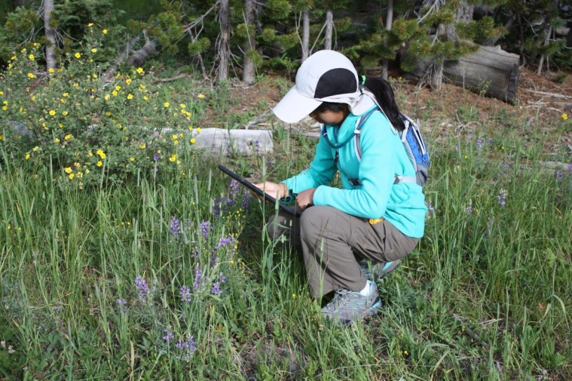 Rachel Ann using iNaturalist to collect community science data.