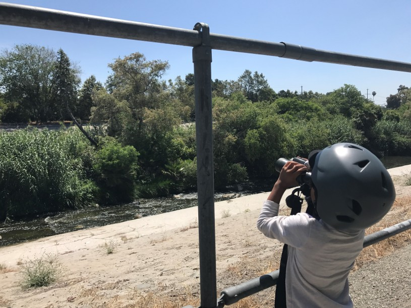 Marcos' son, Bija, birding along the L.A. River.