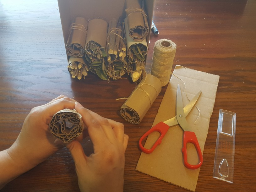 Bug Hotels step 3 - cut rectangular strips of corrugated cardboard, roll tightly and tie with string