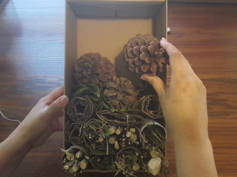 Bug Hotels step 4 - add pinecones, fill in any gaps with leaves, sticks and straw