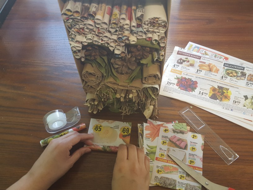 Bug Hotels step 5 - roll strips of newspaper to make tubes with a 2mm-10mm diameter in the center