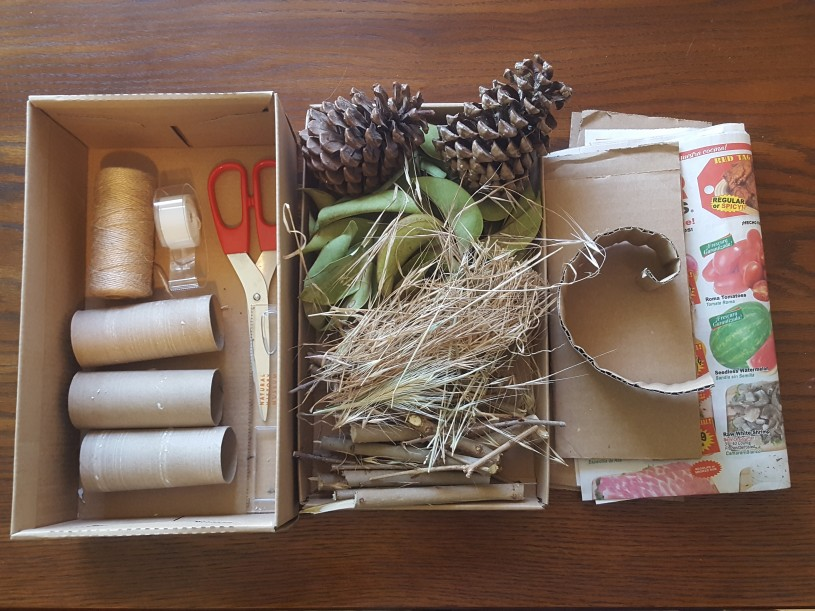 Image of supplies for Bug Hotels activity