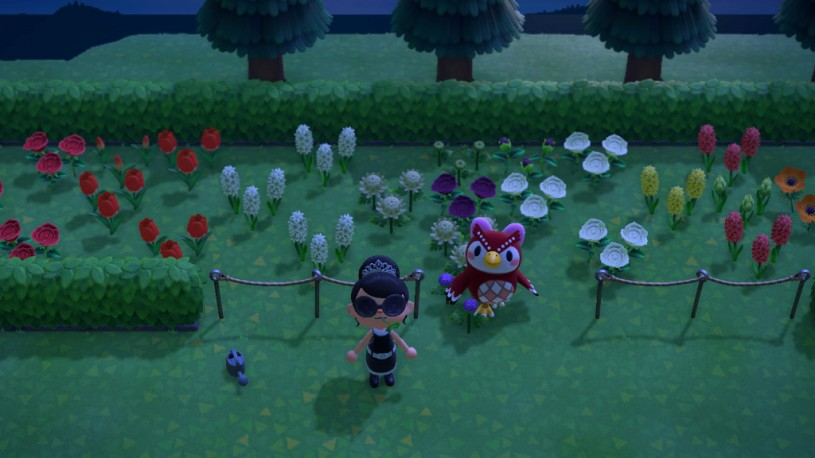 garden girls animal crossing
