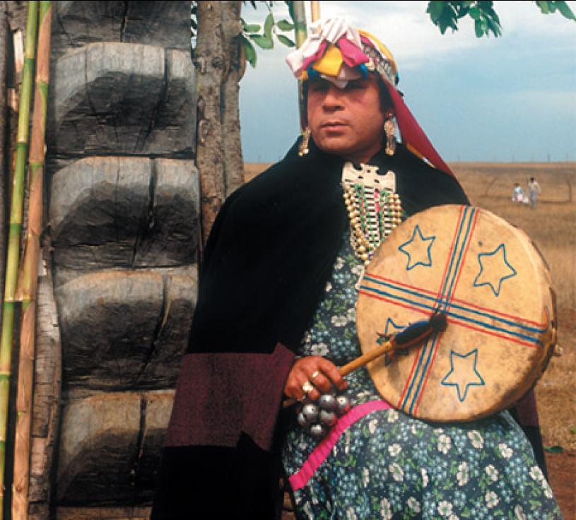 Mapuche Alone