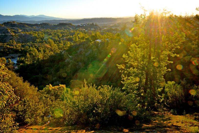 griffith park at sunrise