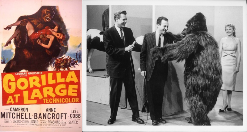 Publicity stills from Gorilla at Large Film and actor wearing suit