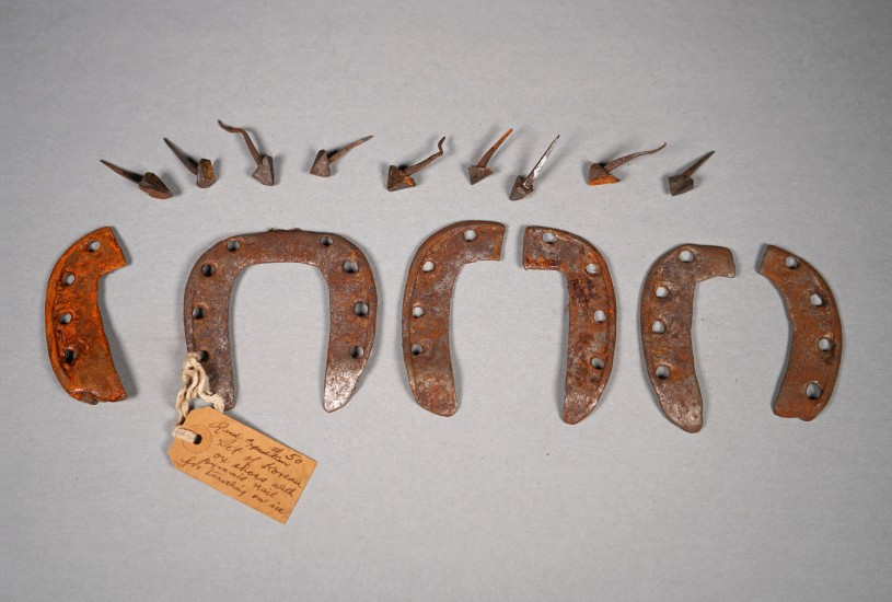 Korean Oxen Shoes