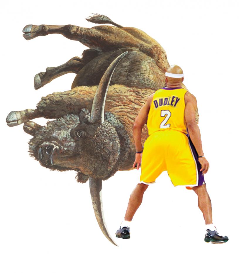 Bison vs Dudley