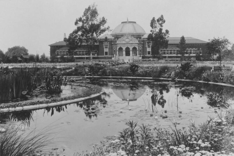 NHM Sunken Garden