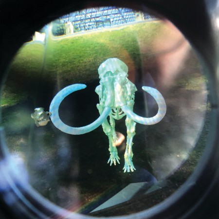 ar image of mammoth