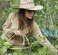 Lauri Kranz gardening