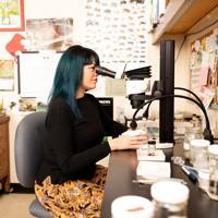 Lisa Gonzalez looking into a microscope