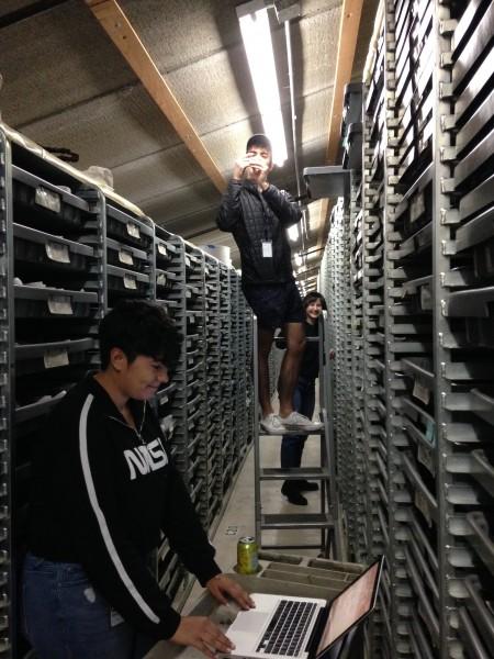 Paleo prep students hard at work at LBTP Shelves